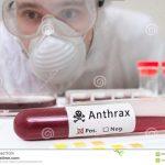 Cegah Penularan Flu Burung dan Sapi Gila