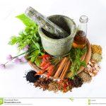 10 Cara Membuat Obat Tradisional