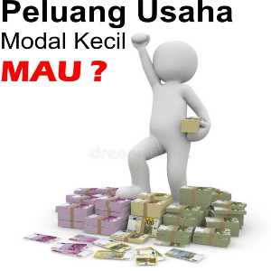 Peluang Usaha Modal Kecil
